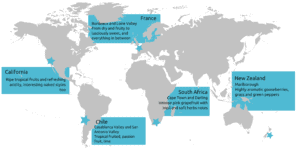 countries and styles of sauvignon blanc